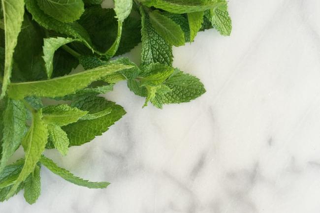 Mint from sister's garden_bikinimeals.com