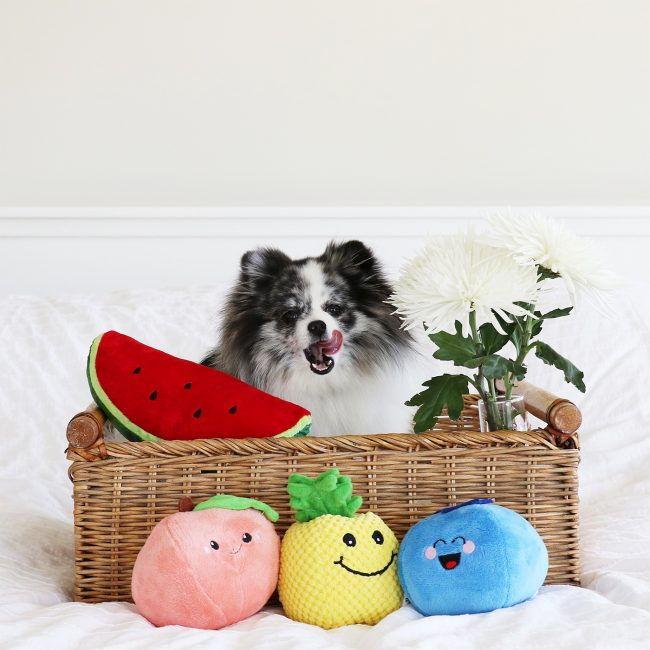 Minty in a fruit basket on mintymondays.com #MintyMondays