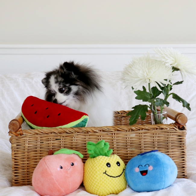 Minty in a fruit basket with toy fruits on mintymondays.com #MintyMondays