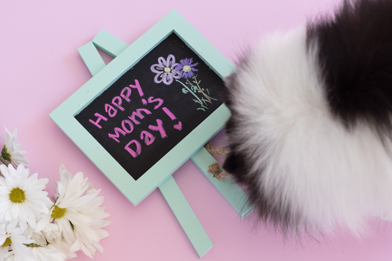 Happy Mother's Day_minty_chalkboard_joyfetti.com