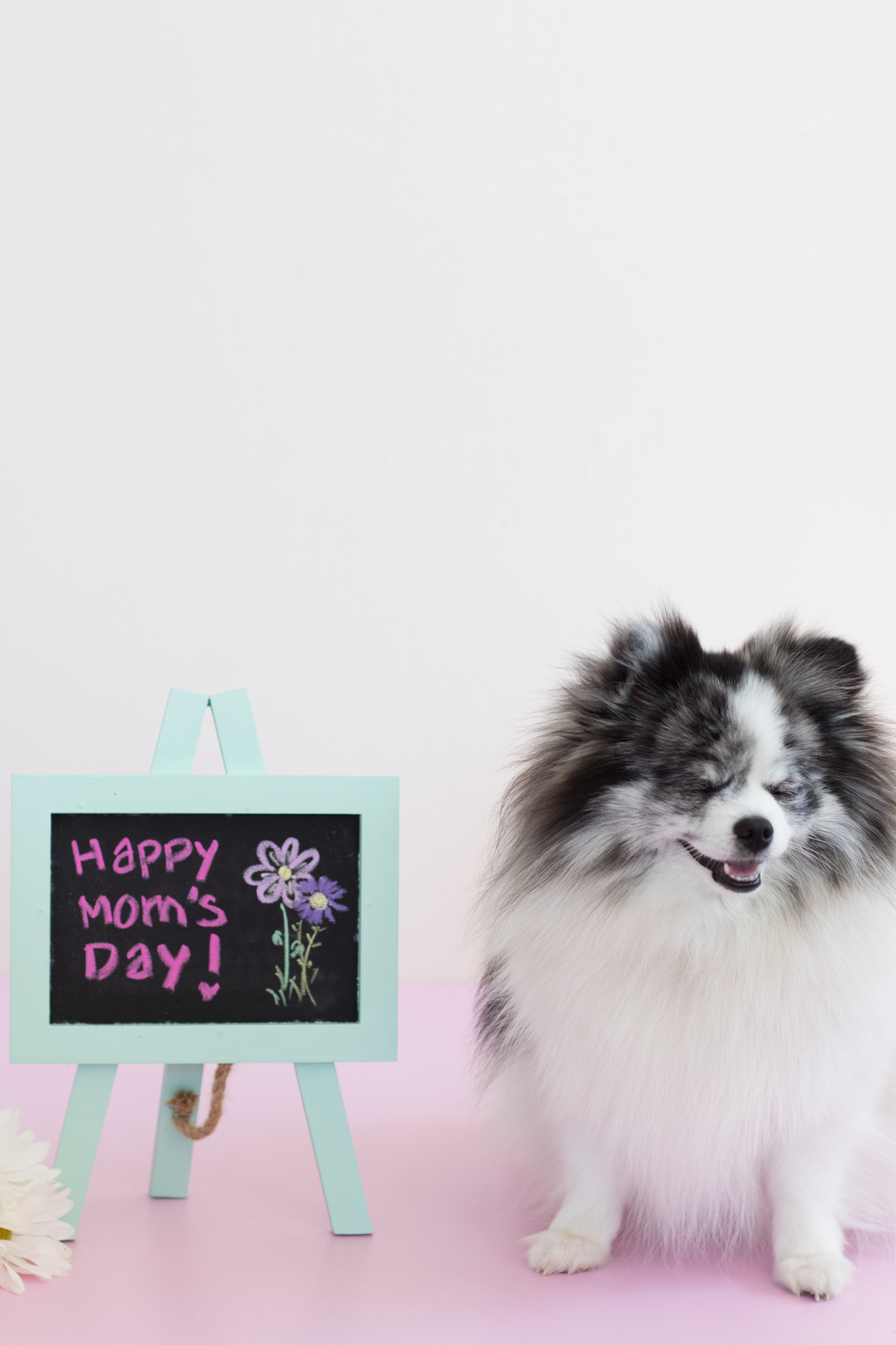 Happy Mother's Day_minty_sneeze_joyfetti.com