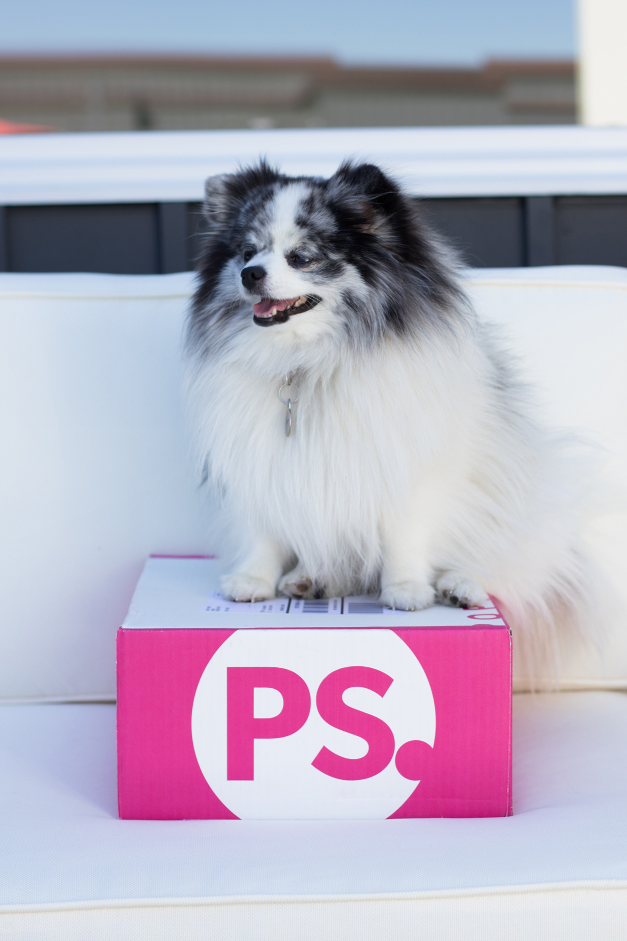popsugar-must-have-box_september_minty-side